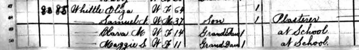 1880 Federal Census for Samuel N. Whittle